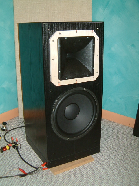 high efficiency speaker asylum